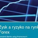 Zysk a ryzyko na rynku Forex - KNF