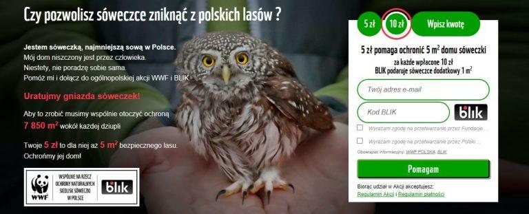 BLIK-płatności-z-banera-reklamowego