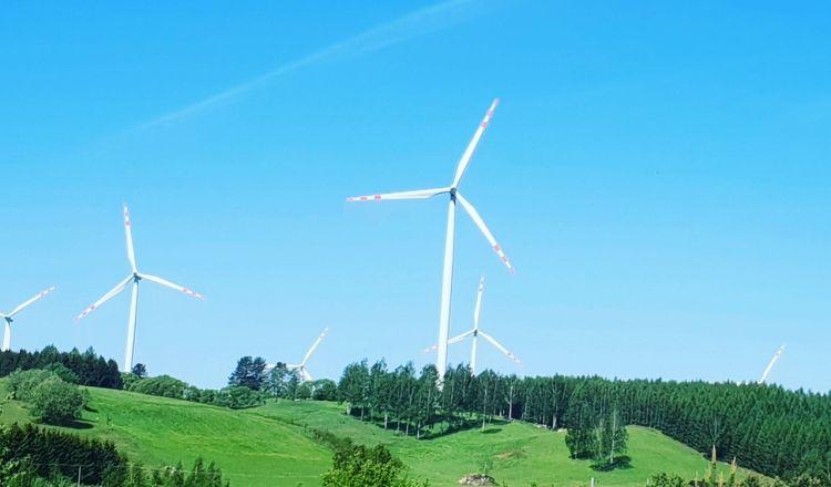 Banki też chcą być eko. mBank przeznaczy 1 miliard złotych na zieloną energię