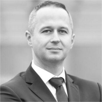 Grzegorz Szulik, Prezes zarządu Provemy